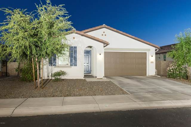 8533 W Lamar Road, Glendale, AZ 85305 (MLS #6142911) :: My Home Group