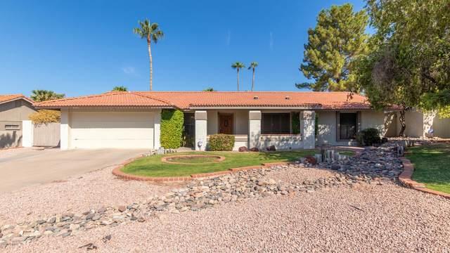 802 E Forest Hills Drive, Phoenix, AZ 85022 (MLS #6143055) :: RE/MAX Desert Showcase