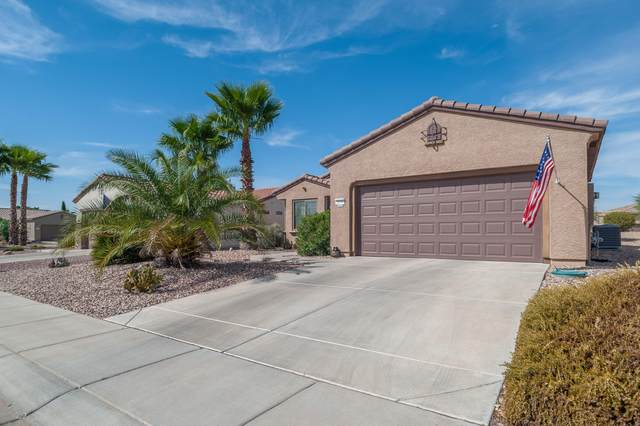20398 N Sojourner Drive, Surprise, AZ 85387 (MLS #6143056) :: Power Realty Group Model Home Center