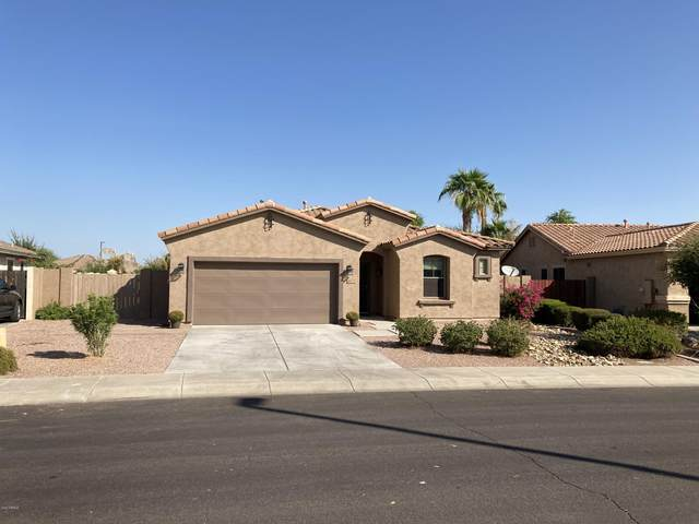 3650 E Vallejo Court, Gilbert, AZ 85298 (MLS #6143075) :: TIBBS Realty