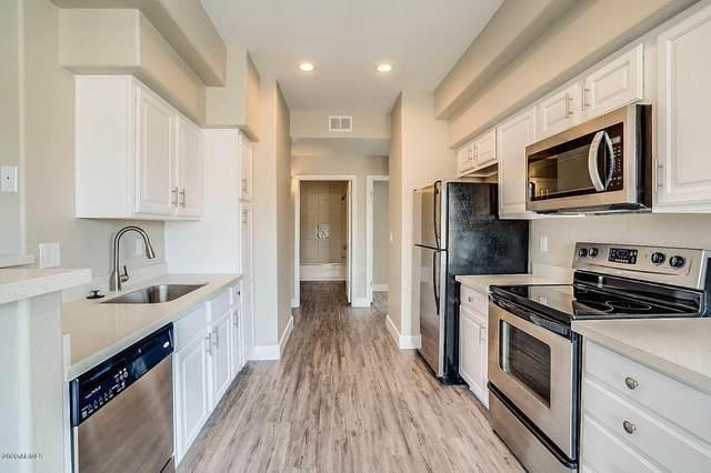5335 E Shea Boulevard #1055, Scottsdale, AZ 85254 (MLS #6143203) :: My Home Group