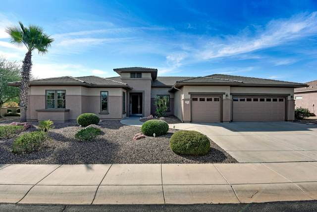 17213 W Whitmore Hall Lane, Surprise, AZ 85387 (MLS #6143236) :: BVO Luxury Group