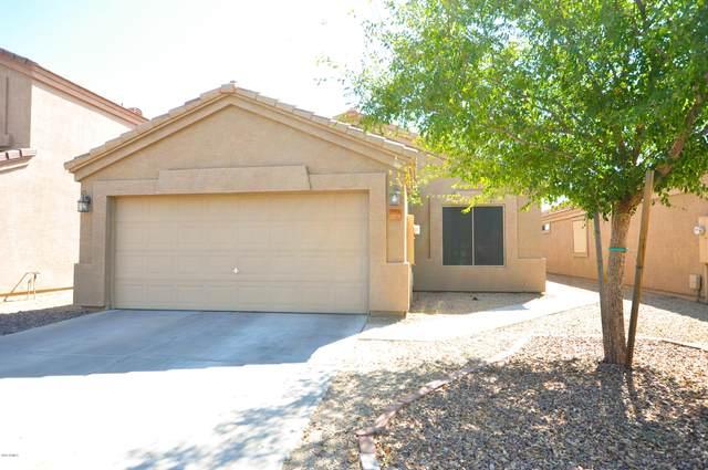 9651 E Butte Street, Mesa, AZ 85207 (MLS #6143358) :: Nate Martinez Team