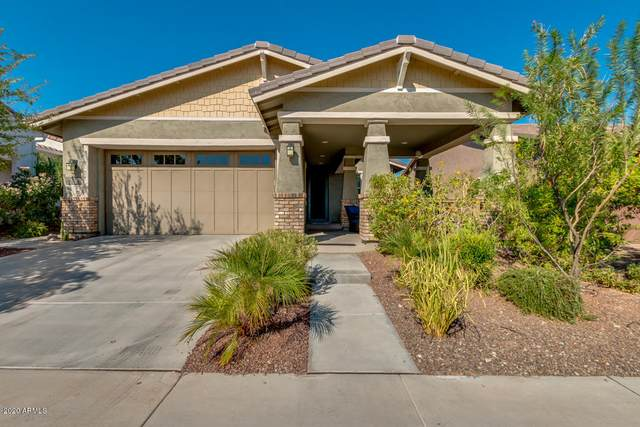 20682 W Colina Court, Buckeye, AZ 85396 (MLS #6143524) :: Long Realty West Valley