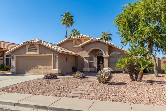 9718 W Mohawk Lane, Peoria, AZ 85382 (MLS #6143533) :: My Home Group