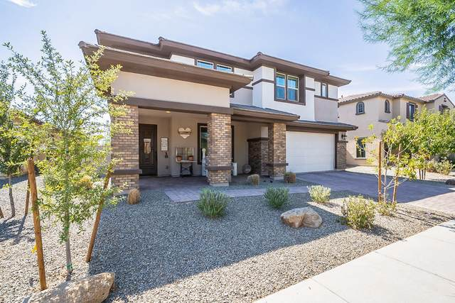 3931 E Powell Place, Chandler, AZ 85249 (MLS #6143653) :: The Everest Team at eXp Realty