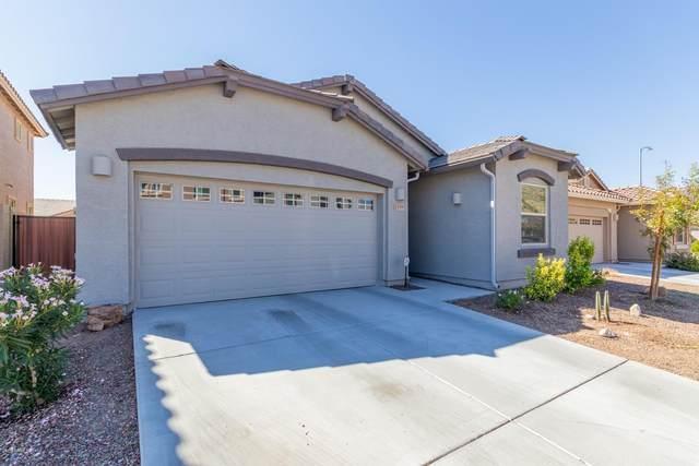 5359 W Hackamore Drive, Phoenix, AZ 85083 (MLS #6143699) :: Maison DeBlanc Real Estate