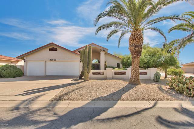 26049 S Saddletree Drive, Sun Lakes, AZ 85248 (MLS #6143755) :: Power Realty Group Model Home Center