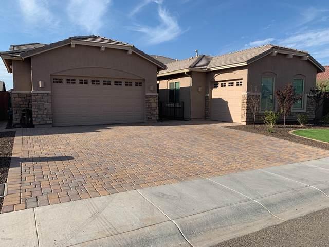 6628 W Dale Lane, Phoenix, AZ 85083 (MLS #6143779) :: Nate Martinez Team