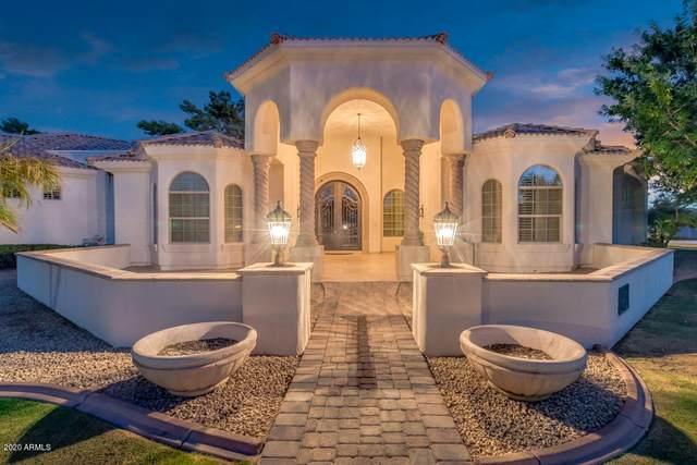 295 N Cloverfield Terrace, Litchfield Park, AZ 85340 (#6143794) :: Luxury Group - Realty Executives Arizona Properties