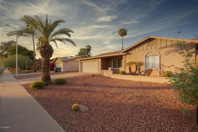 4528 E Capistrano Avenue, Phoenix, AZ 85044 (MLS #6144026) :: My Home Group