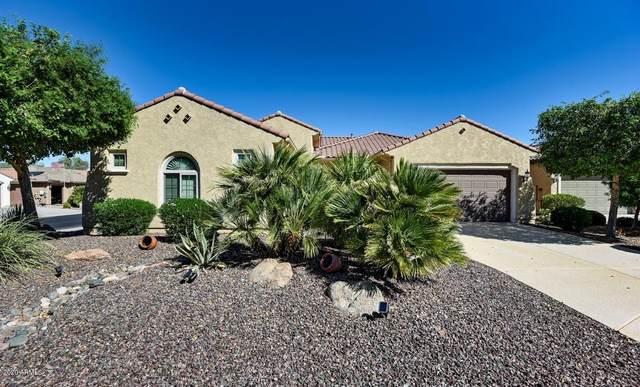 27318 W Runion Court, Buckeye, AZ 85396 (MLS #6144209) :: Long Realty West Valley