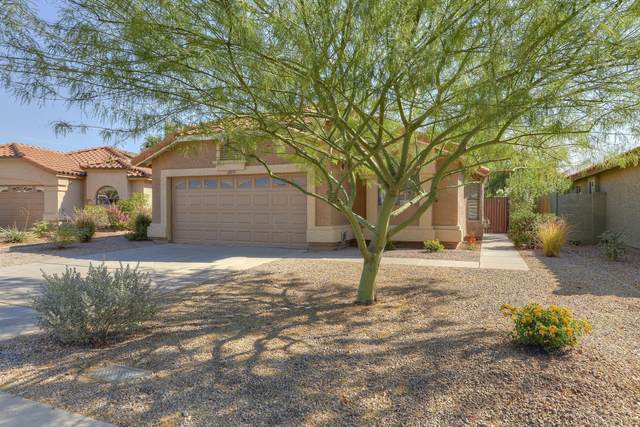 12835 N 89th Place, Scottsdale, AZ 85260 (MLS #6144222) :: Nate Martinez Team