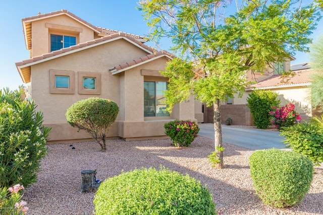 16565 W Saguaro Lane, Surprise, AZ 85388 (MLS #6144240) :: BVO Luxury Group
