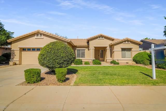 21252 E Nightingale Road, Queen Creek, AZ 85142 (MLS #6144312) :: Sheli Stoddart Team   M.A.Z. Realty Professionals