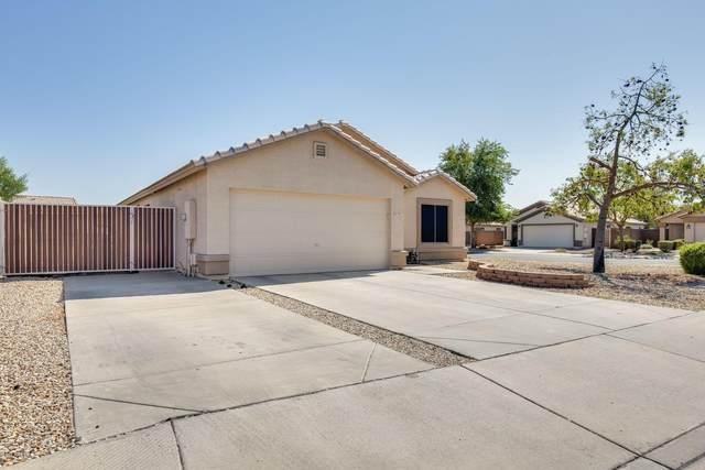 9917 N 93RD Drive, Peoria, AZ 85345 (MLS #6144381) :: Sheli Stoddart Team | M.A.Z. Realty Professionals