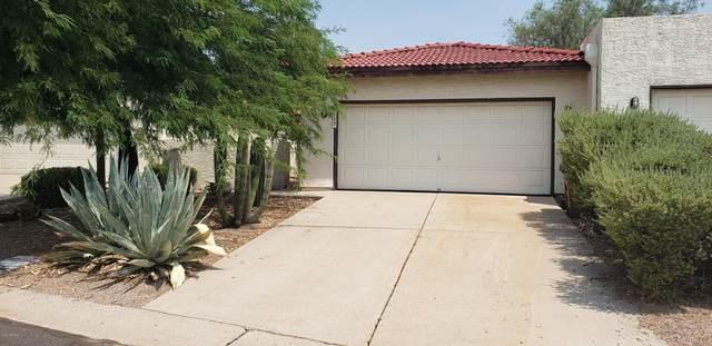 6029 S Alameda Road #3, Gold Canyon, AZ 85118 (MLS #6144383) :: Walters Realty Group