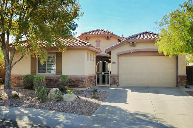 2435 W Shackleton Drive, Phoenix, AZ 85086 (MLS #6144413) :: Openshaw Real Estate Group in partnership with The Jesse Herfel Real Estate Group