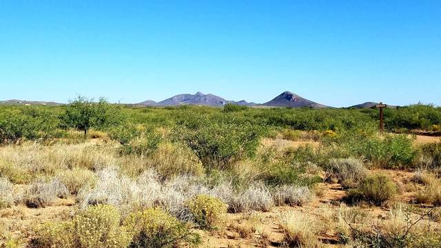 Lot 52 N High Lonesome Road, Elfrida, AZ 85610 (MLS #6144488) :: Scott Gaertner Group