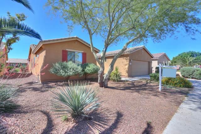 42899 W Ocean Breeze Drive, Maricopa, AZ 85138 (MLS #6144506) :: Brett Tanner Home Selling Team