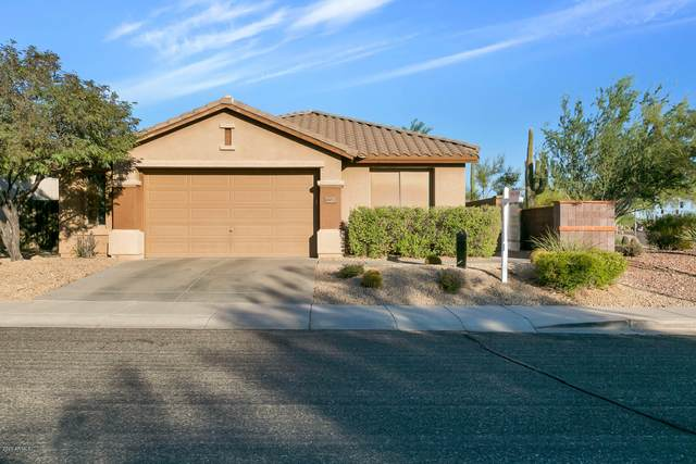 41013 N Iron Horse Way, Anthem, AZ 85086 (MLS #6144542) :: Devor Real Estate Associates