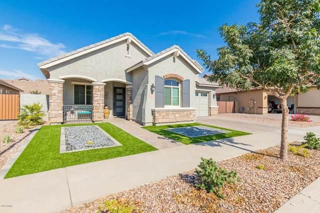 4188 E Dwayne Street, Gilbert, AZ 85295 (MLS #6144547) :: CANAM Realty Group