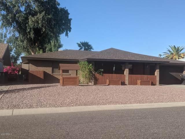 7016 E Flossmoor Avenue, Mesa, AZ 85208 (MLS #6144564) :: The AZ Performance PLUS+ Team