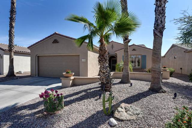 15259 W Springleaf Way, Surprise, AZ 85374 (MLS #6144602) :: neXGen Real Estate