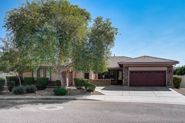 5425 W Paso Trail, Phoenix, AZ 85083 (MLS #6144681) :: D & R Realty LLC