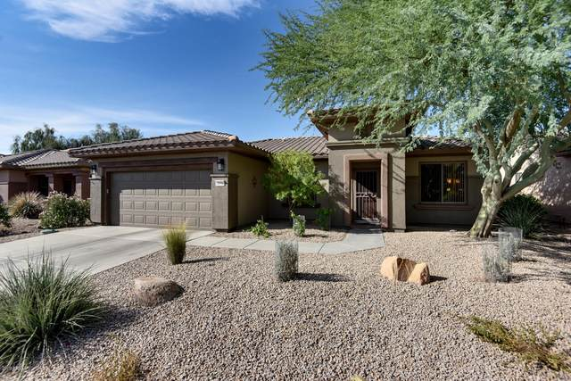 18706 N Summerbreeze Way, Surprise, AZ 85374 (MLS #6144736) :: NextView Home Professionals, Brokered by eXp Realty