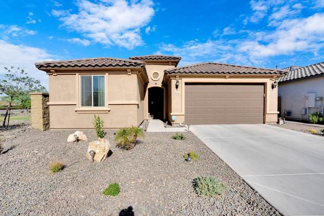 6516 W Madre Del Oro Drive, Phoenix, AZ 85083 (MLS #6144843) :: NextView Home Professionals, Brokered by eXp Realty