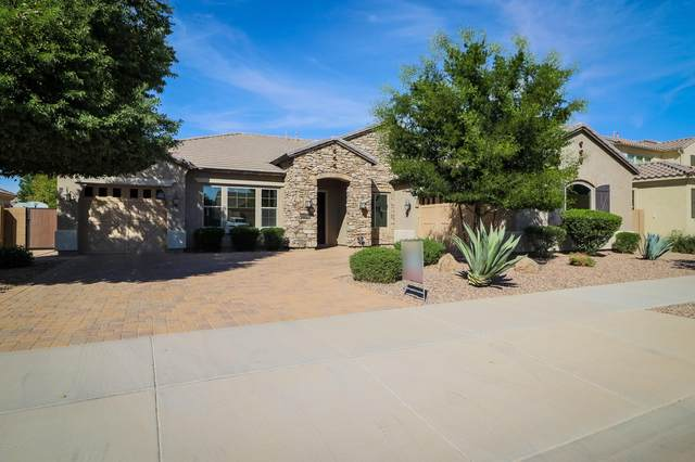 22290 E Escalante Road, Queen Creek, AZ 85142 (MLS #6144903) :: Lucido Agency
