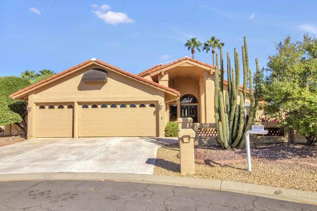 10310 E Regal Court, Sun Lakes, AZ 85248 (MLS #6144940) :: Midland Real Estate Alliance