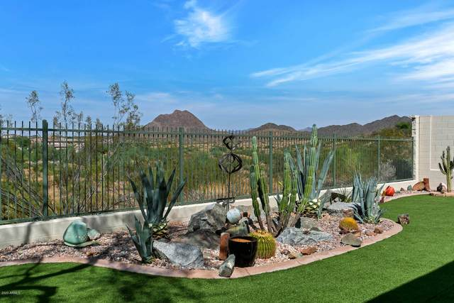 43226 N Outer Banks Drive, Anthem, AZ 85086 (MLS #6144959) :: My Home Group