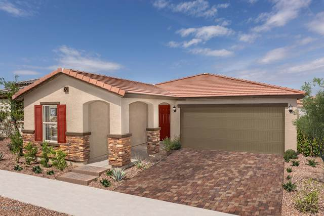 2732 N 154TH Drive, Goodyear, AZ 85395 (MLS #6144973) :: Dijkstra & Co.
