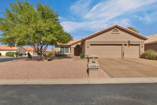 10324 E Nacoma Drive, Sun Lakes, AZ 85248 (MLS #6144989) :: Midland Real Estate Alliance
