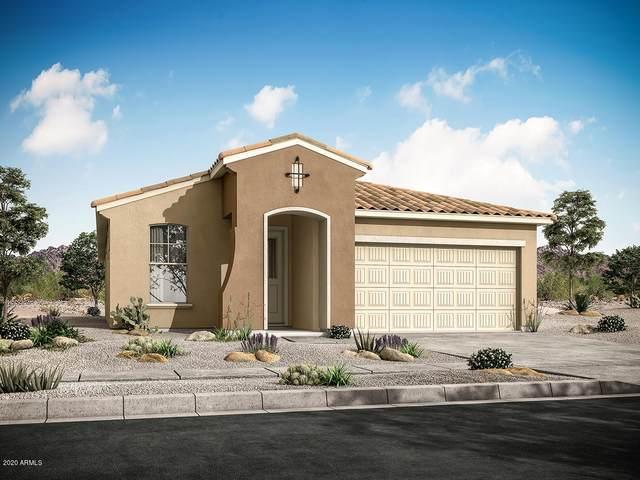 10852 W Marshall Avenue, Phoenix, AZ 85037 (MLS #6145040) :: Arizona Home Group