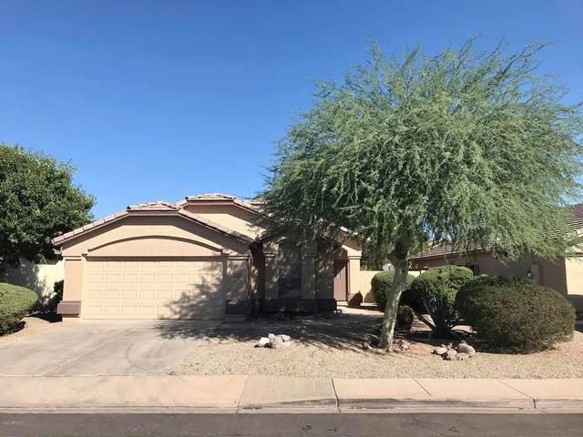 8228 E Portobello Avenue, Mesa, AZ 85212 (MLS #6145043) :: My Home Group