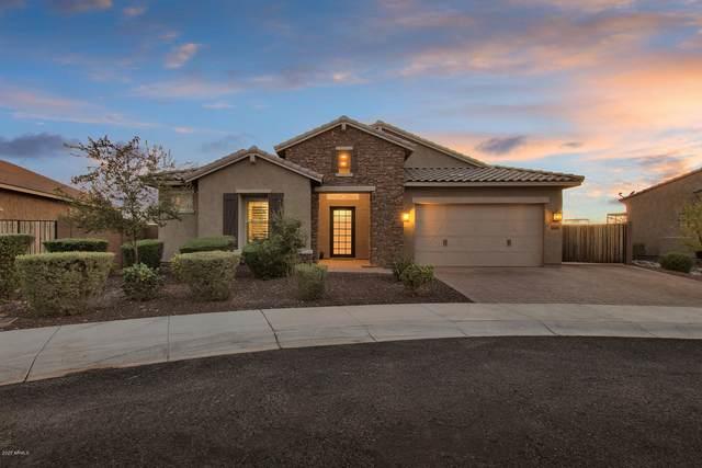 26166 N 96TH Drive, Peoria, AZ 85383 (MLS #6145067) :: Sheli Stoddart Team | M.A.Z. Realty Professionals