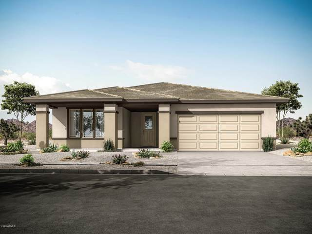 10828 W Marshall Avenue, Phoenix, AZ 85037 (MLS #6145074) :: Dijkstra & Co.