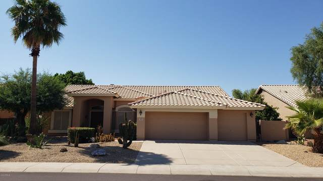 2128 N 134TH Avenue, Goodyear, AZ 85395 (MLS #6145087) :: NextView Home Professionals, Brokered by eXp Realty