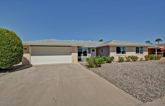 11064 W Winchester Drive, Sun City, AZ 85351 (MLS #6145092) :: The Ellens Team