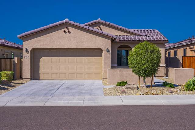 17938 W Cedarwood Lane, Goodyear, AZ 85338 (MLS #6145118) :: The Everest Team at eXp Realty