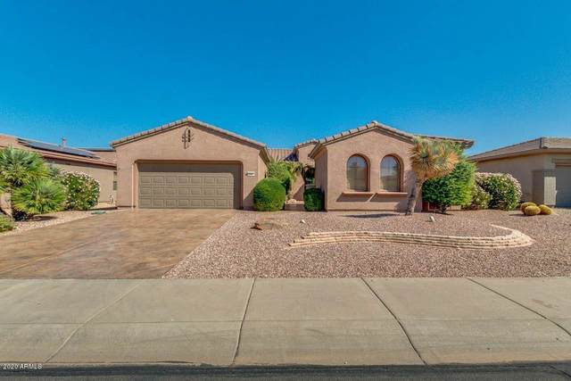 20059 N Golden Barrel Drive, Surprise, AZ 85374 (MLS #6145131) :: neXGen Real Estate