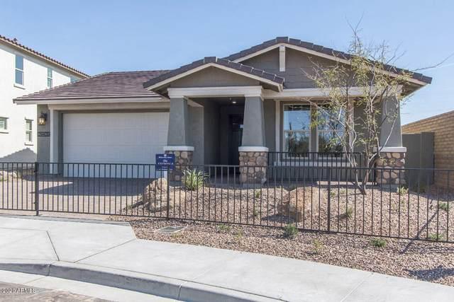 19857 W Montecito Avenue, Litchfield Park, AZ 85340 (MLS #6145317) :: Dave Fernandez Team | HomeSmart