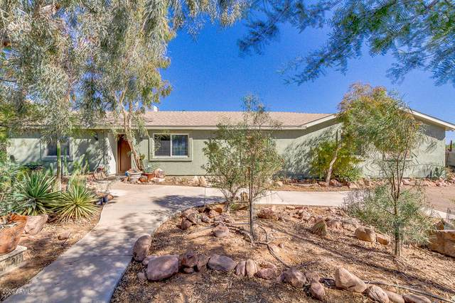1075 S Mountain View Road, Apache Junction, AZ 85119 (MLS #6145407) :: Brett Tanner Home Selling Team