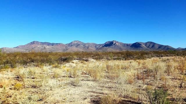 TBD W Della Street, Bisbee, AZ 85603 (MLS #6145439) :: Yost Realty Group at RE/MAX Casa Grande