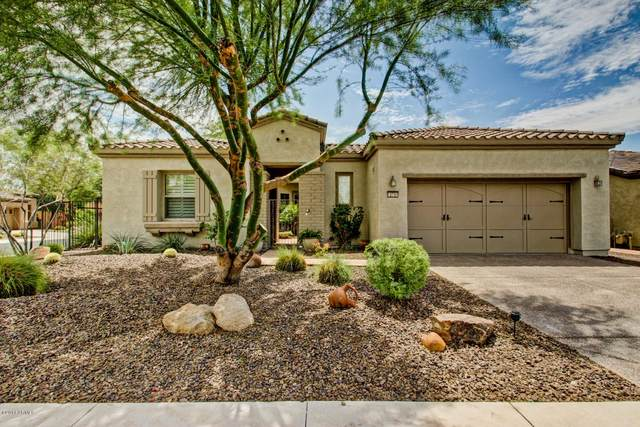 12731 W Jasmine Trail, Peoria, AZ 85383 (MLS #6145442) :: Nate Martinez Team