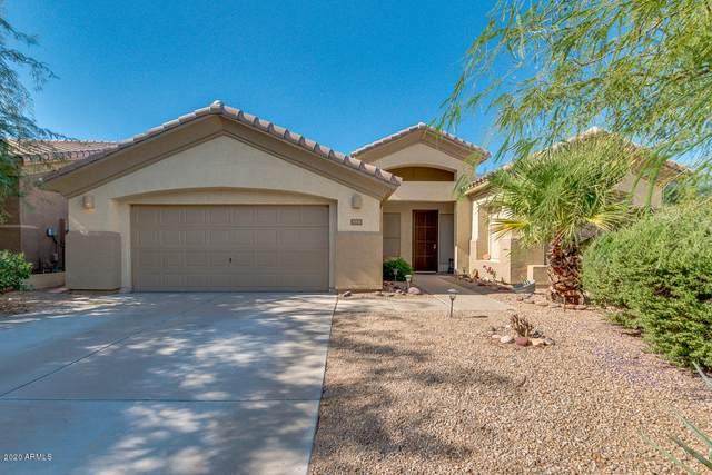 11370 S Morningside Drive, Goodyear, AZ 85338 (MLS #6145557) :: neXGen Real Estate