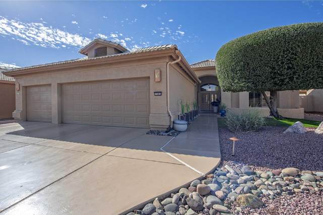 15003 W Robson Circle N, Goodyear, AZ 85395 (MLS #6145567) :: ASAP Realty